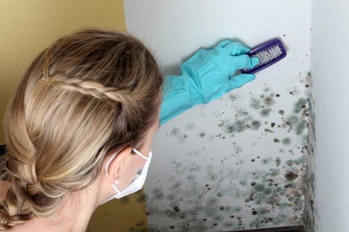 женщина устраняет плесень из угла комнаты